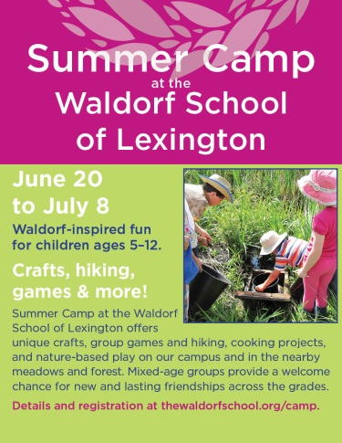 WSL_SummerCamp_LexFunAd_20016